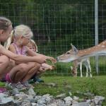 Rondane Friluftssenter Rondetunet – Children