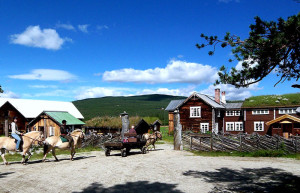 Kvebergsoya Gard – Horseback riding and horse-drawn carriage rides