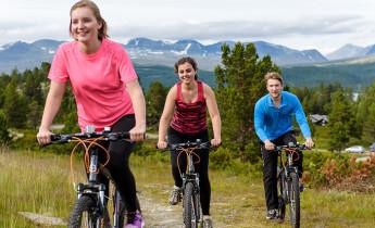 Spidsbergseter Resort Rondane – Cycling