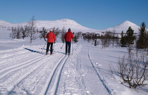 Cross Country skiing along the Rondanevegen