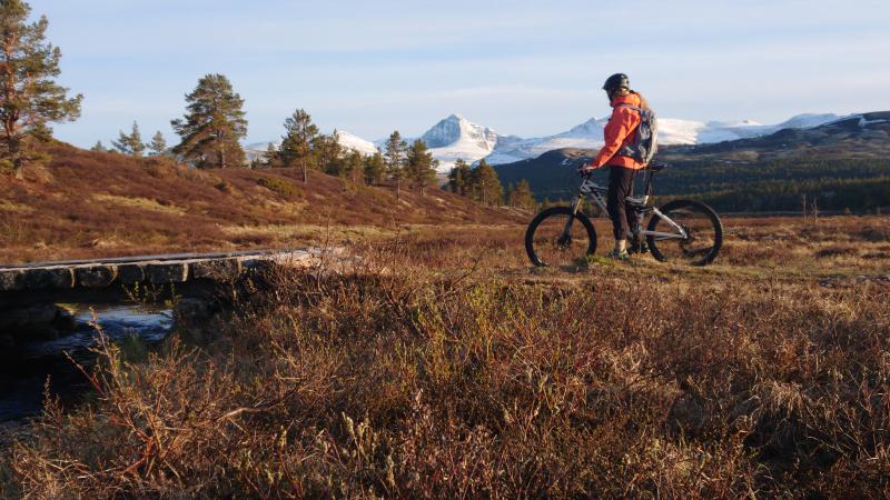 Opplev Atndalen fra sykkelsetet-foto Ivar Bakken Berg-450